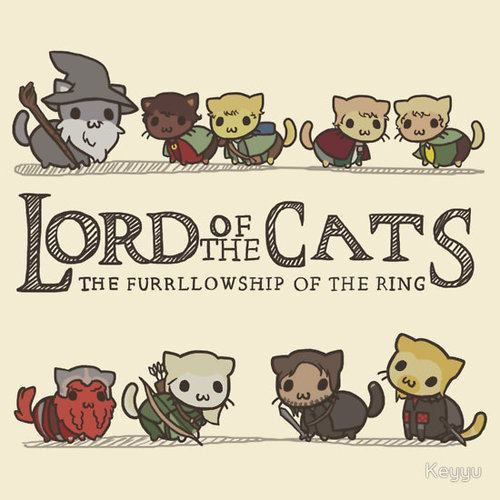 • cat lord of the rings ring cats LOTR kitten gandalf Frodo fellowship sheer-shenanigans •