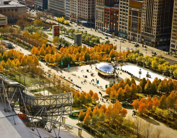 1000 images about millennium park on pinterest gardens for Chicago landscape