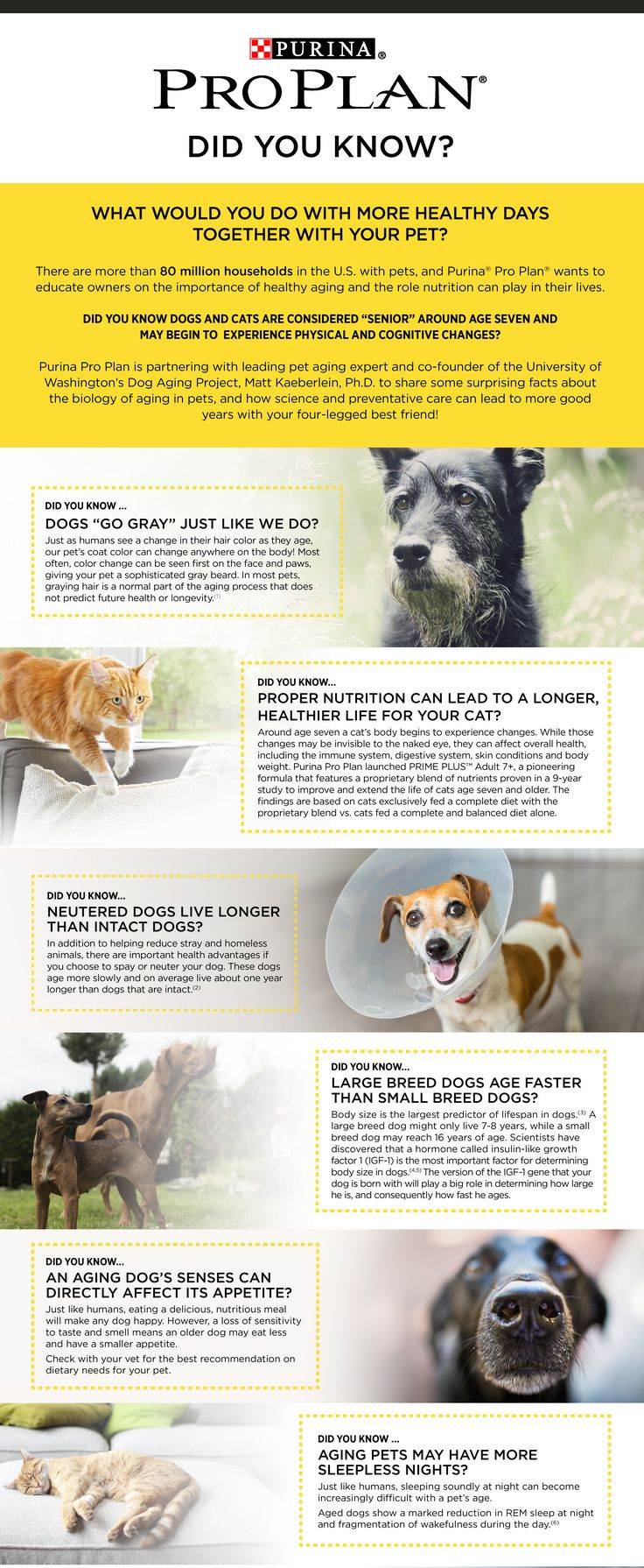 Purina Pro Plan Teamed Up With Dr Kaeberlein From The Dog Aging Project To  Bring