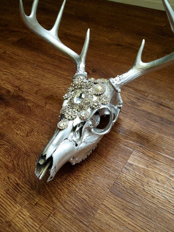 25 Best Ideas About Deer Skull Decor On Pinterest Deer