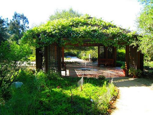 17 best images about scs public on pinterest gardens - Rancho santa ana botanic garden wedding ...