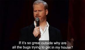 Jim Gaffigan. I would ask the ants in my bookcase that very