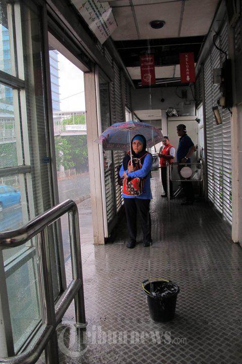 Halte Busway Bocor Calon Penumpang Menggunakan Payung, Foto 1 - Tribun Images