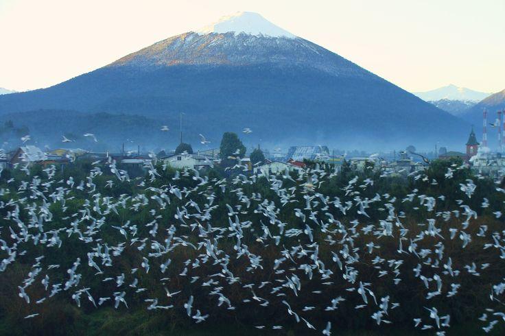 Volcán Hornopirén, Chile