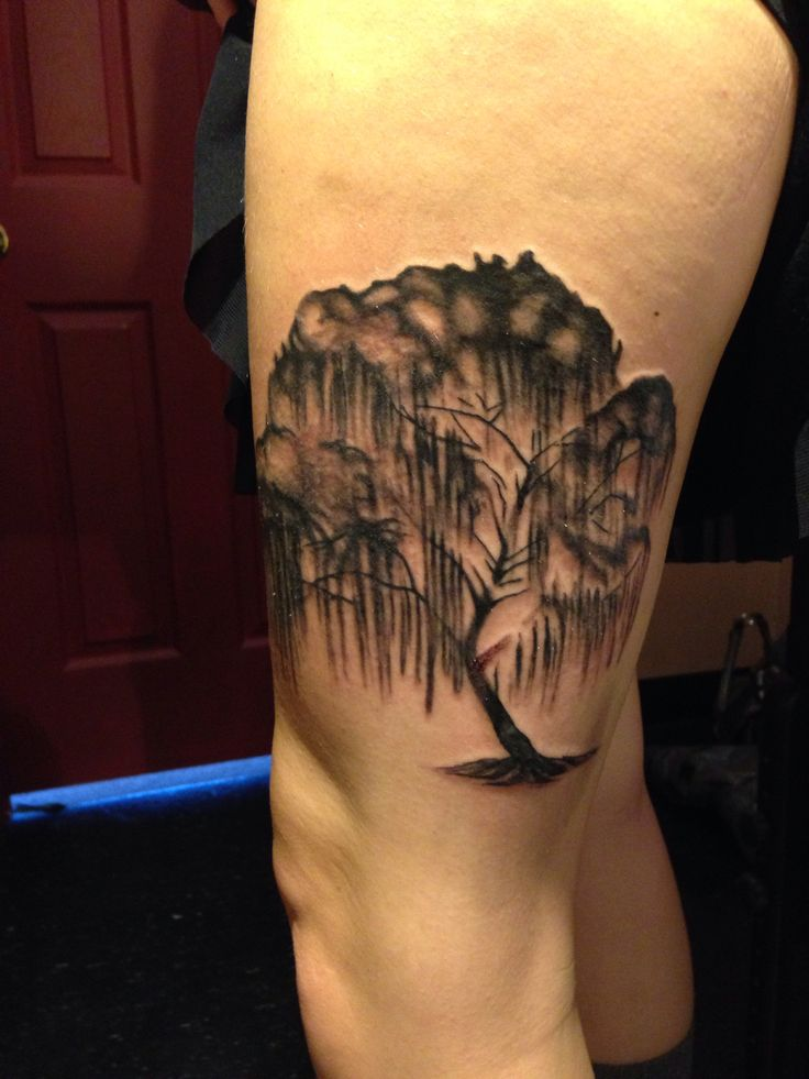 Willow tree tattoo by jeff harp at inksomnia tattoos for Willow tree tattoo