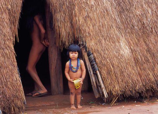 Kalapalo   Turismo Nativo
