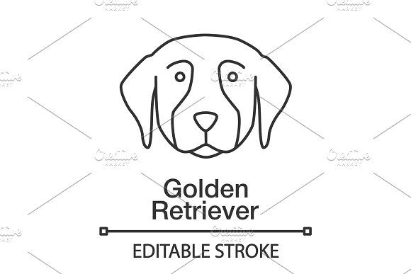 Golden Retriever Linear Icon Line Illustration Outline Drawings