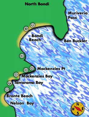 bondi coastal walk