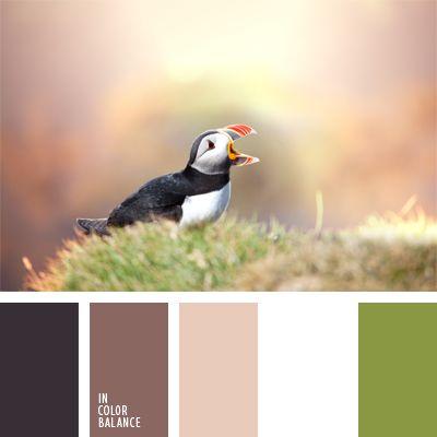 blanco y verde, color café claro, colores para la decoración, de café, marrón claro, matices frescos de color marrón, negro, negro y marrón, paletas de colores para decoración, paletas para un diseñador, tonos marrones, verde pastel.