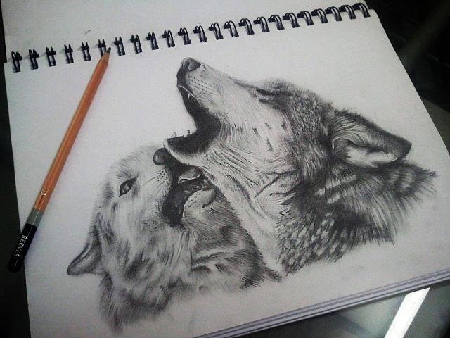 17 Best Ideas About Lobo Dibujo A Lapiz On Pinterest Dibujos 640x480