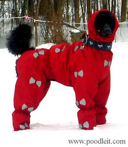 Sassy modelling her Norwegian suit