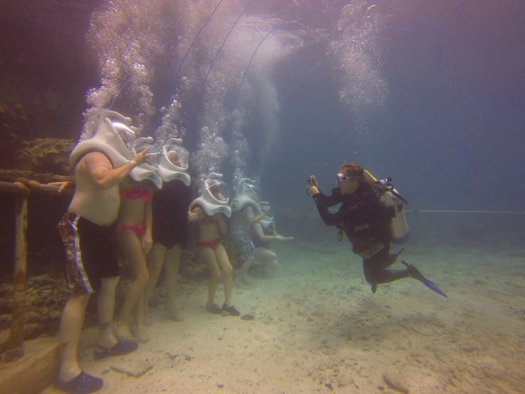 Sea Trek Take a guided walk on the ocean floor and experience the thrill of exploring a coral reef and all its wonders like a diver without the need for specialized training. Following a 15 minute orientation, a certified Sea Trek guide will lead you and your group of no more than 10 people along....