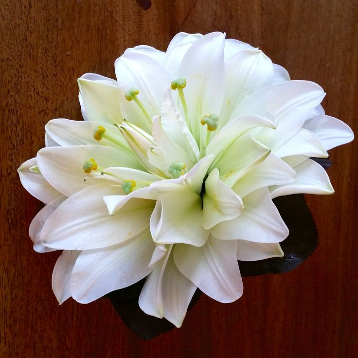 Glamelia av liljor #brudbukett #glamelia #liljor #weddingbouquet #bröllopsblommor #weddingflowers #lilies #systerblom