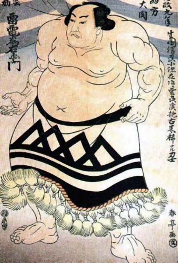 Raiden Tameimon Sumo