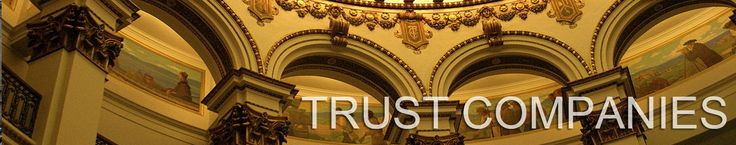 A trust is a specific contract on the basis of which the trust settlors transfer a part of their private or company assets (possibly all their assets) to a third person referred to as trustee. The trustee may be a person appointed by the settlor or a professional licensed trustee holding a license for the carrying on of these activities (usually a bank or a special company holding a license for trust administration). http://slogold.net/offshore_trust.html