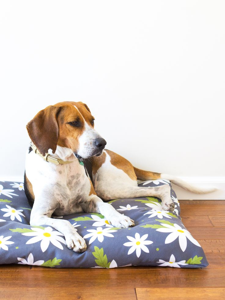 Diy Easy To Sew Zippered Dog Bed Cover Diy Dog Bed Dog