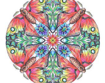 142 Best Kleur Nummers Images On Pinterest