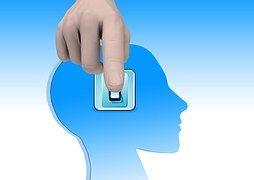 Brain, Turn On, Education, Read, Book