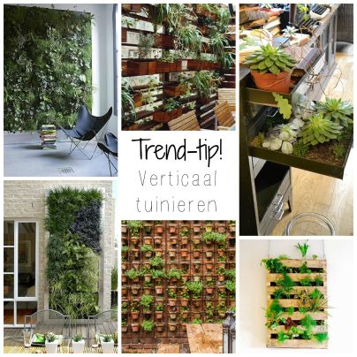 De nieuwe #trend voor groen binnen en buiten is verticaal. Alles kan: in potten, een pallet, een oud ladekastje, in oude voorwerpen of blikken (zelfs binnen). Leuk voor planten op je terras, maar ook heel geschikt voor een kruidentuin op je balkon!