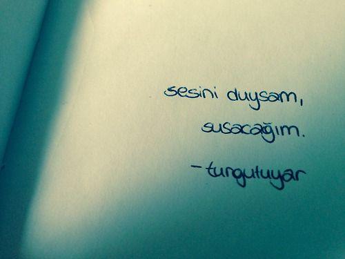 Sesini duysam, susacağım - Turgut Uyar