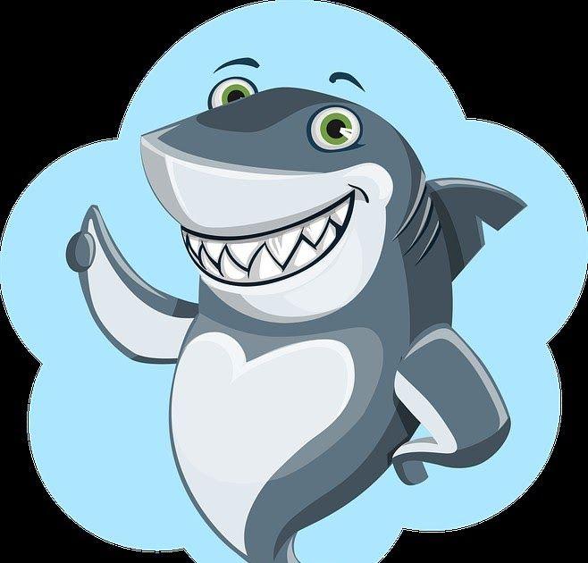 28+ Gambar Ikan Hiu Kartun in 2020 | Safe internet, Kids safe
