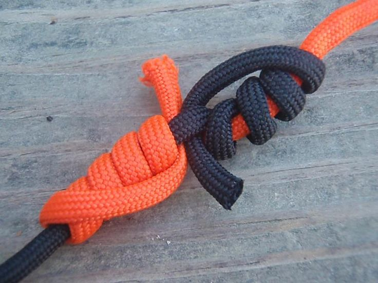 Essential knots how to tie the 20 knots you need to know for Blood knot fishing