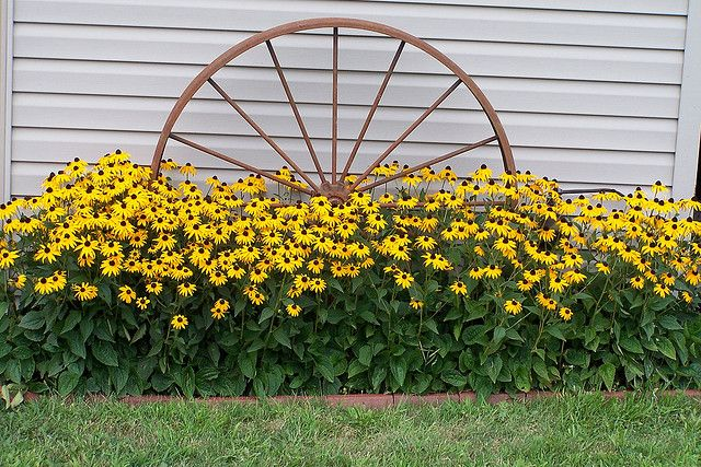 Wagon wheel and flowers