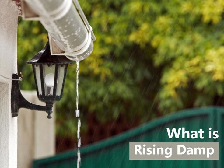 Rising damp is a major issue with house construction and can cause many problems. The major question, however, is: what is rising damp, and what can be done about it?