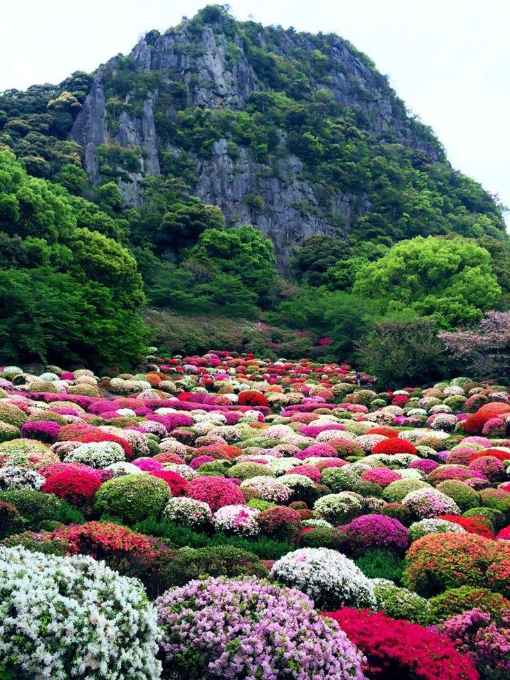Japanese Garden In Mifuneyama, Saga, Japan 御船山