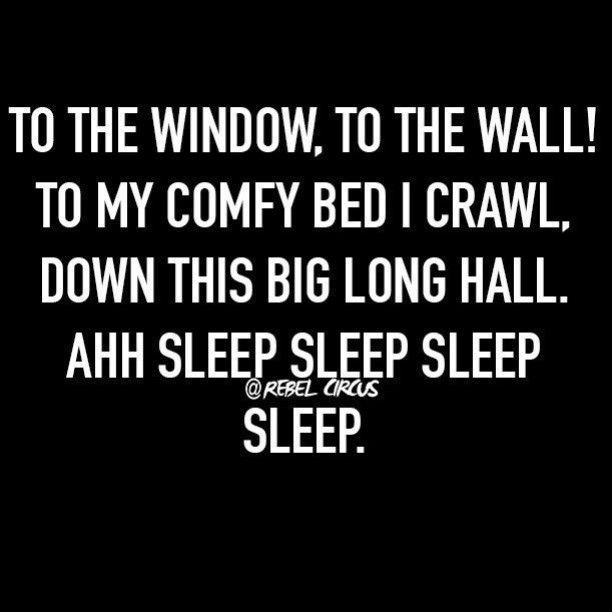 To the window! To the wall! To my comfy bed I crawl, down this big long  & sleep, sleep, sleep, sleep!