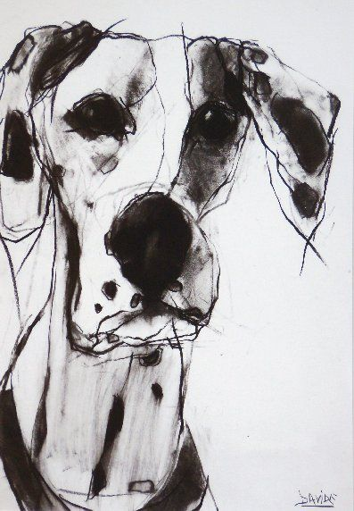 Spot by Valerie Davide