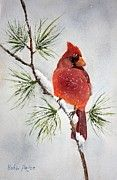 This would make a wonderful Christmas Card. See my website: http://bobbi-price.artistwebsites.com