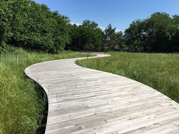 3040 best utomhus outdoors images on pinterest for Nelson byrd woltz landscape architects