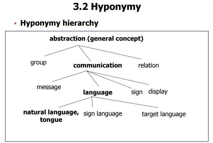 Hyponymy hierarcy