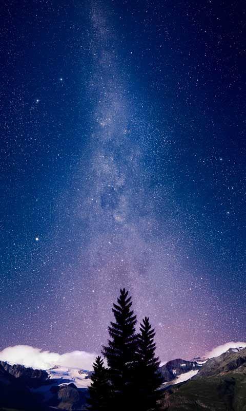 Night Sky on Alpine