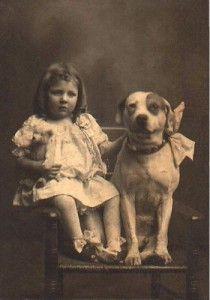 Durante 150 años, los Pitbulls fueron criados para ser niñeras - Bienvenidos al Blog de All For Paws América Latina!