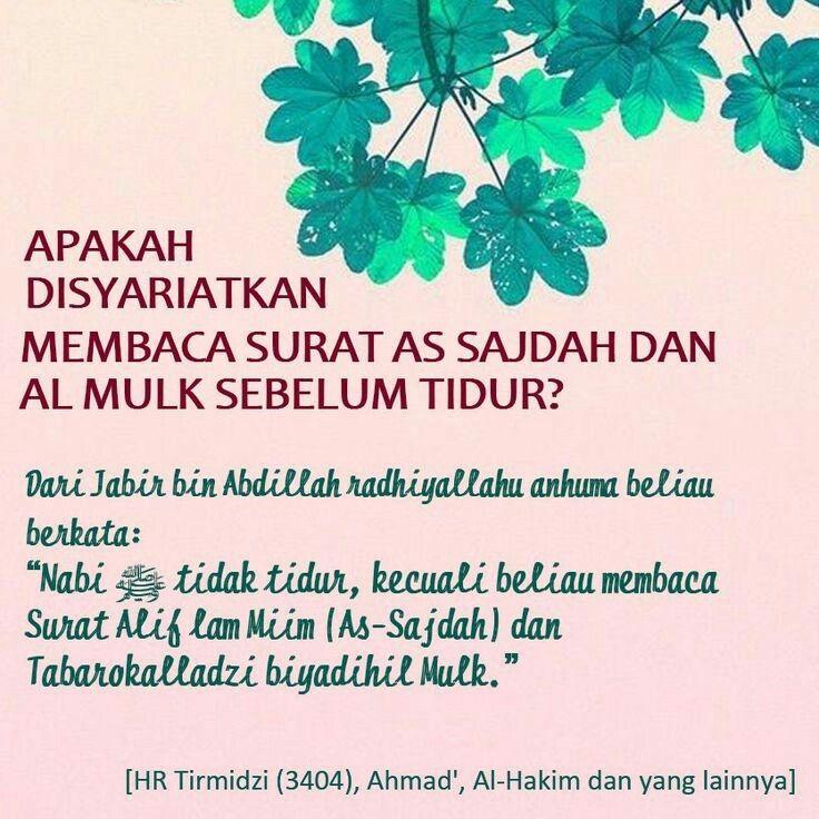 Anjuran Baca Surat Al Mulk Sblm Tidur Quran Motivasi