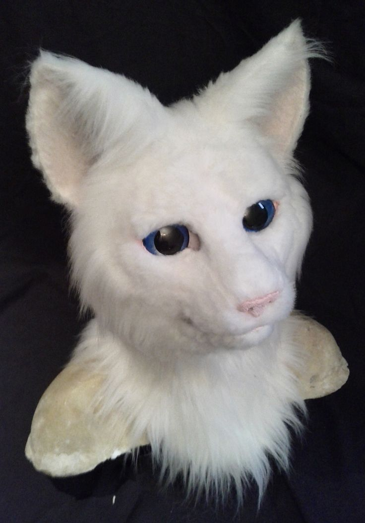 realistic white cat fursuit costume head built on a resin