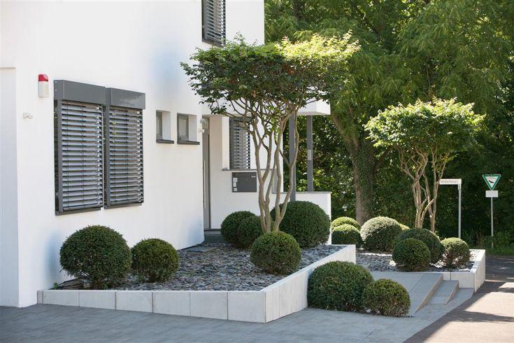 Puristischer vorgarten eingangsbereich u vorgarten pinterest g rten hauseingang und - Vorgarten mit grasern ...