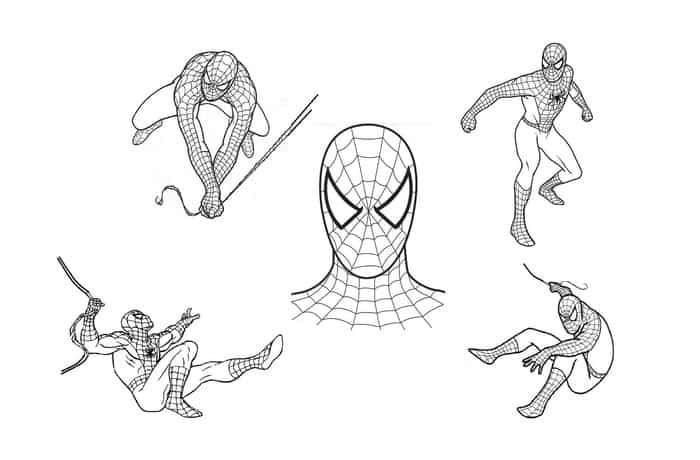 All Spiderman Coloring Pages Spiderman Coloring Cartoon Coloring Pages Superhero Coloring