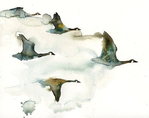 Canada geese flock birds -Watercolor-bird painting-Archival Print from my original watercolor painting 14x11 inch: