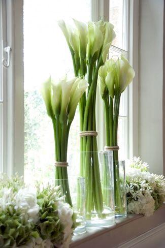 Die langen Stiele der Calla machen die weißen Blumen noch eleganter! #tollwasblumenmachen #flower