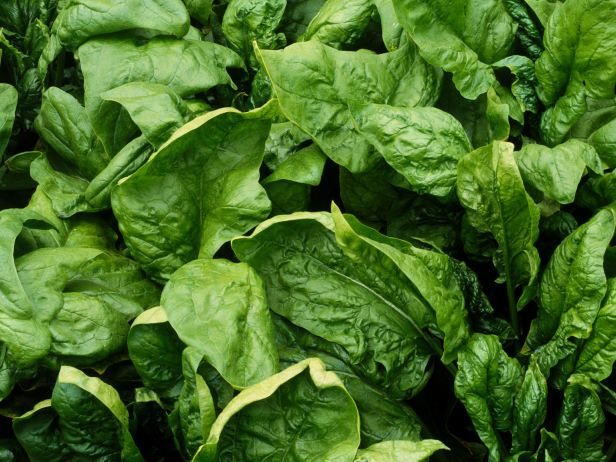 Delicious Leaf Spinach Packed with Vitamins