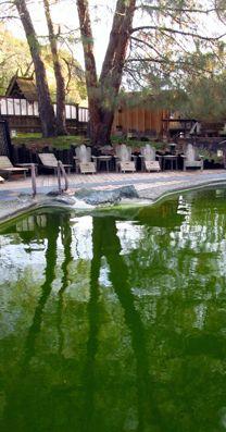 Mineral Pool at Wilbur Hot Springs, Northern California. photo by Meg Solaegui