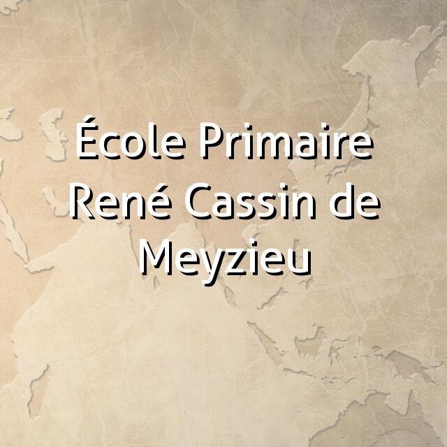 """""""École Primaire René Cassin de Meyzieu"""""""