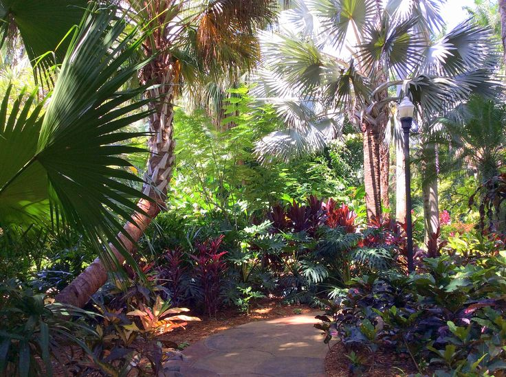 Sunken Gardens St Petersburg Florida Usa In To Be My Garden Pinterest Florida St