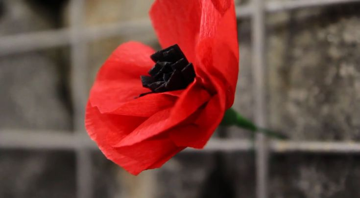 A nice rendition of a very moving song ... -- by The Lancer Band In memory of those who have gone before us - the troopers of the Lancers, the 1st Armoured Regiment (AIF), and 1st Light Horse Regiment - and all Australian soldiers and service personnel - and those who served in Vietnam.