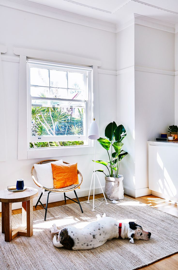 Clean and simple living room from Bondi apartment renovation. Photo: Scott Hawkins | Story: homes+