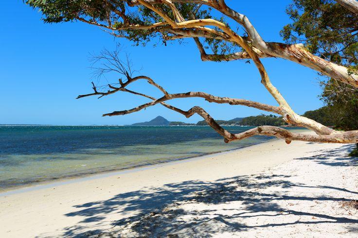 Bagnalls Beach NSW