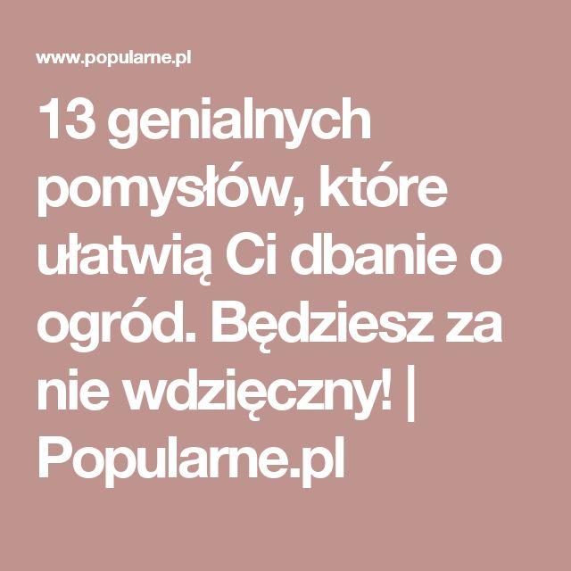 13 genialnych pomysłów, które ułatwią Ci dbanie o ogród. Będziesz za nie wdzięczny! | Popularne.pl